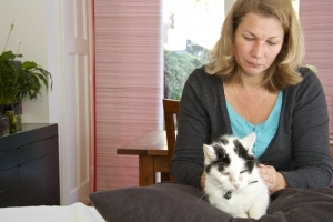Reiki behandeling dieren